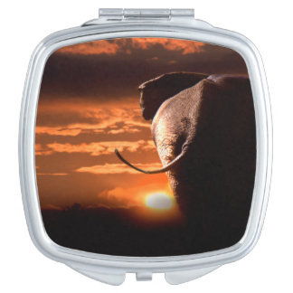 Elefant mit Sonnenuntergang Taschenspiegel