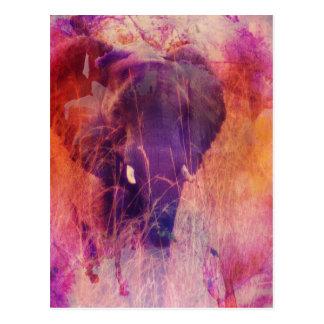 Elefant Postkarten