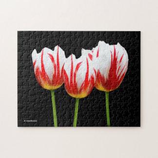 Elegante Ahornblatt-Tulpen Puzzle