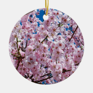 elegante rosa Kirschblüten-Baumphotographie Rundes Keramik Ornament