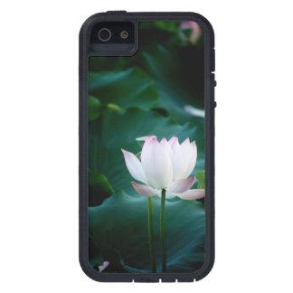 Elegante weißer Lotos-Blume iPhone 5 Etuis