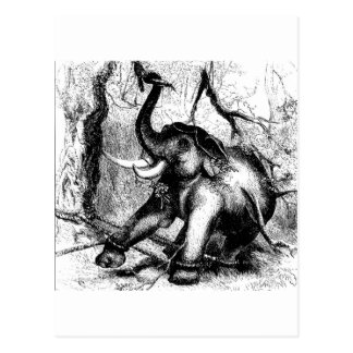 elephant-clip-art-2 postkarte