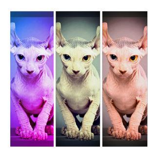 Elf-Sphinx-Katzen-Entwurf Triptychon