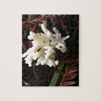 Elfenbein-korallenroter Pilz Puzzle