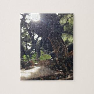 Elfensattel-Pilz Jigsaw Puzzle