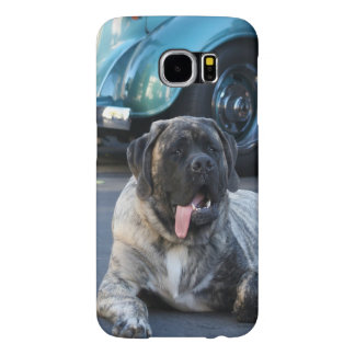 Englischer Mastiffhund
