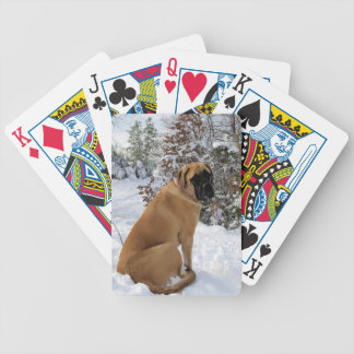 """Englisches Mastiffhund""""Schnee-Pose"""" Foto Pokerkarten"""