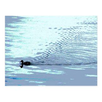 Ente und Kräuselungen Postkarte