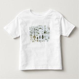 Entomologie-Insekten Kleinkinder T-shirt