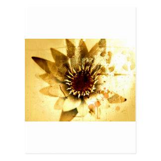 Erdige Blume der Natur-| Postkarte