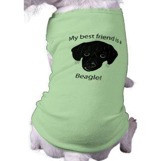 Erhielt einem Beagle besten Freund? Top