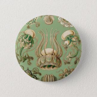 Ernst Haeckels Narcomedusae Runder Button 5,1 Cm
