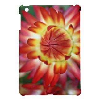 Erschließung zu Ihnen iPad Mini Hüllen