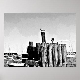Erwachsener Farbton: Seemöwe an einem Boots-Dock Poster