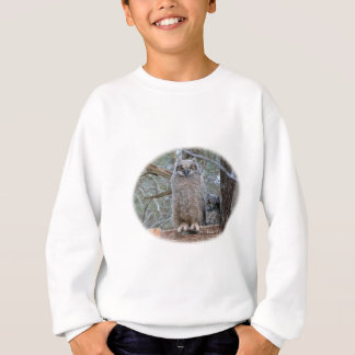 Eulen-Babys im Korb Sweatshirt