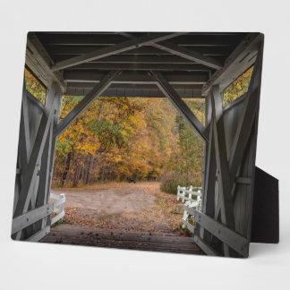 Everatt Straßen-überdachte Brücke Platte
