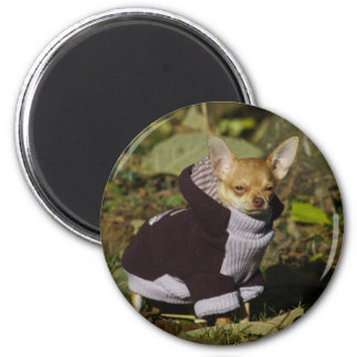 Extravaganter Chihuahua Runder Magnet 5,1 Cm