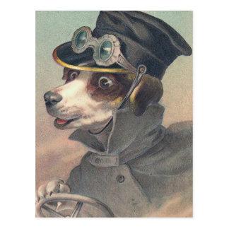 Fahrer-HundeVintage Illustration Postkarten