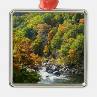 Fall-Farbe am Ohiopyle Staats-Park Silbernes Ornament