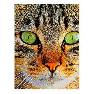 Faszinierende grüne mit Augen Katze Postkarte