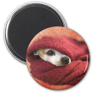 Feiertags-Chihuahua Runder Magnet 5,1 Cm
