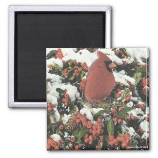 Feiertags-Kardinals-Magnet Quadratischer Magnet
