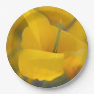 Feld der blühenden Mohnblumen Pappteller