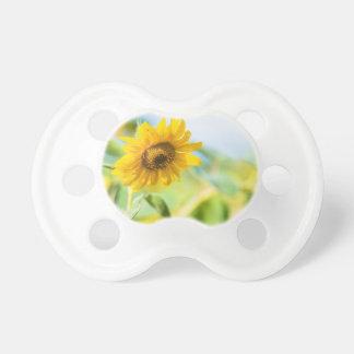 Feld der Sonnenblumen Schnuller