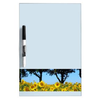 Feld der Sonnenblumen, Sonnenblume 01,2 Trockenlöschtafel
