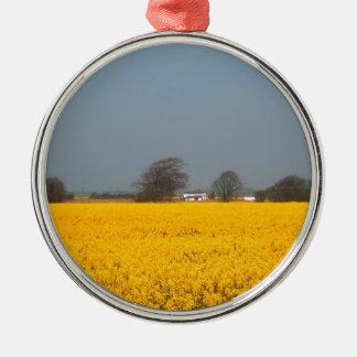 Feld in der Blüte u. in der Land-Hütte Rundes Silberfarbenes Ornament