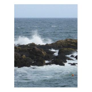 Felsige Küste in York Maine Postkarte