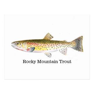 Felsiger Gebirgsforelle-Fische Postkarte