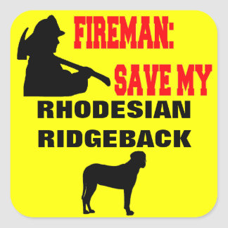 Feuerwehrmann retten meinen Rhodesian Ridgeback Quadratischer Aufkleber