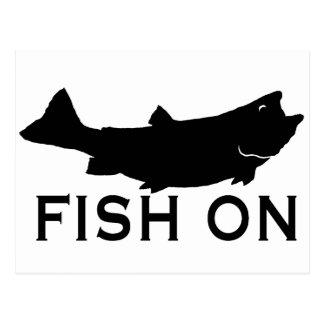 Fische an postkarten