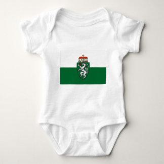Flagge von Steiermark, Österreich Babybody
