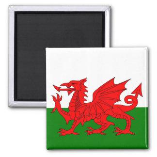 Flagge von Wales Quadratischer Magnet