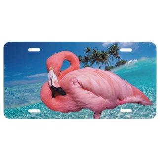 Flamingo und Palmen US Nummernschild