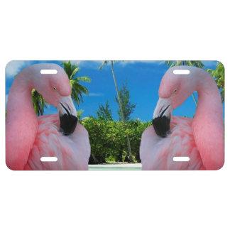 Flamingo und Strand US Nummernschild