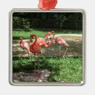 Flamingos auf dem Riviera-Maya in Mexiko Quadratisches Silberfarbenes Ornament