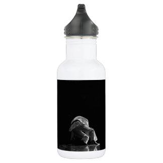 """Flasche Wasser """"der Prüfungen wird das Licht Edelstahlflasche"""