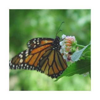 Flatternde Monarch-Schmetterlings-Leinwand Leinwanddruck