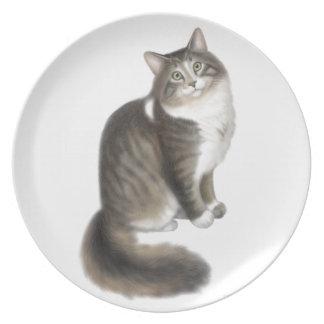 Flaumige Duffy Maine Waschbär-Katzen-Platte Melaminteller