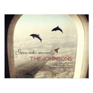 Fliegen mit Delphinen - Vermutung, die sich Postkarte