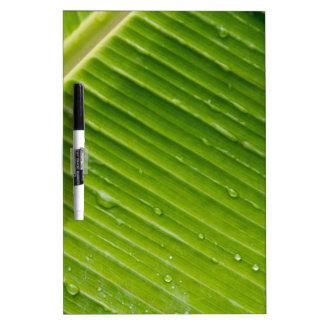 Flora Dominica 1 Memo Board
