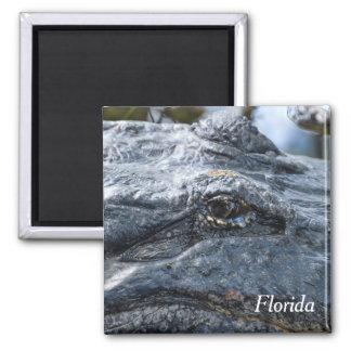 Florida-Alligatormagnet Quadratischer Magnet