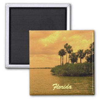 Florida-Palme-Träumerei Quadratischer Magnet