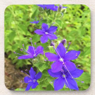 flower6.JPG Untersetzer