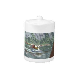 Flugzeug Alaskas Bush und Fischen-Reise