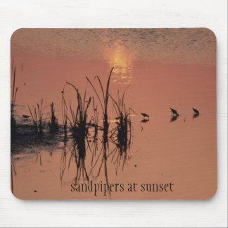 Flussuferläufer am Sonnenuntergang Mousepad