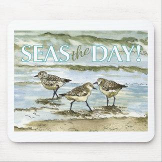 Flussuferläufervogel-Strand-Aquarell Mauspads